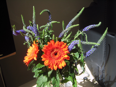 Purple flowers and orange Gerber daisies